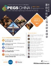 PEGS China-2016-Brochure