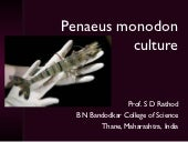 Fishery Science: Penaeus monodon cu...