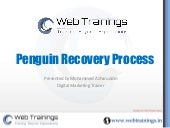 Penguin Update Recovery - Step by Step Guide
