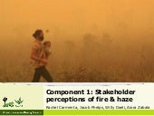 Stakeholder perceptions of fire and haze: early results
