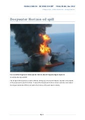 Deepwater Horizon oil spill case