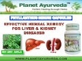 HERBAL REMEDY FOR KIDNEY STONES