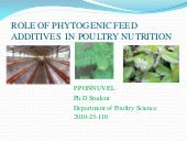 Phytobiotics  ponnuvel