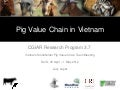 Pig value chains in Vietnam