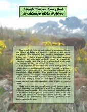 Xeriscape Landscaping: Common Quest...