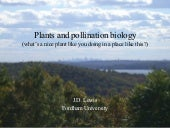 Plants And Pollination Biology