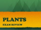 Plants Exam Review