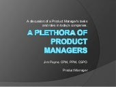 Plethora product managers