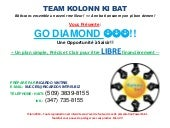 Plp oppotuninte power point team ko...