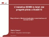D. Camol - Plug-in Excel e Windows Application come interfacce di accesso al SEP