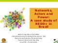 Networks, actors and power: A case study of REDD+ in Brazil