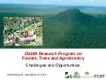 "The New CGIAR Research Program on Forests, Trees, and Agroforestry: Opportunities and Challenges""  Friday, November 12th, 2010. 11.00 – 12.00pm,  ICRAF Conference Hall"