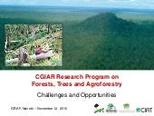 The New CGIAR Research Program on F...