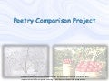 Poetry comparison project