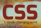 CSS: a rapidly changing world