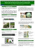 Poster69: Partial functional characterization of the promoters CP1+ and CP2 derived from a cassava glutamic acid-rich protein gene, in cassava and carrot transgenic plants
