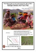 Preponderant Factors in the Conservation of the native-potatoes variability in the peasant communities of Amaru, Chahuaytire and Viacha-Pisac-Cusco-Perú