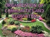Organization of communities and eco...