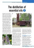 The Distillation of Essential Oils Part 1