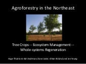 Agroforestry in the Northeast