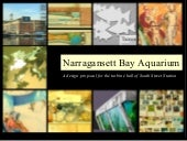 Narragansett Bay Aquarium Design