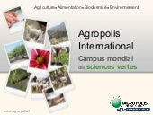 Présentation Agropolis-International