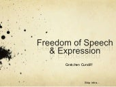 Freedom of Speech & Expression