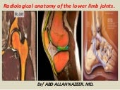 Presentation1.pptx. header of radiological anatomy of lower limb joints