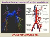 Presentation1.pptx, radiological vascular anatomy of the chest and abdomen.
