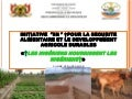PAA Africa Programme Inception Workshop - Niger 3N Initiative
