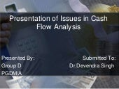 Issues In Cash Flow Analysis