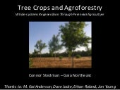 Tree Crops & Agroforestry - Young F...