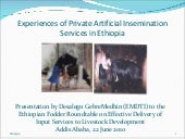 Experiences of Private Artificial I...