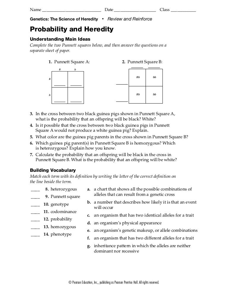 Printables Probability Review Worksheet probability and heredity