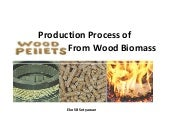 Production Process Wood Pellet From...