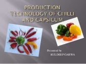 Production technology of chili and ...