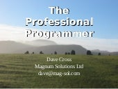 The Professional Programmer