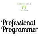 Professional Programmer (3 Years Later)