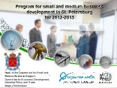 Program.for.small.and.medium.busine...