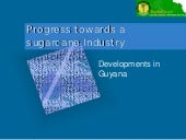 Progress Towards SugarCane Industry