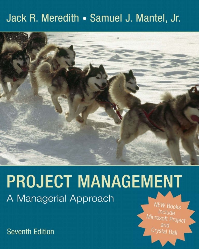 Project management term paper