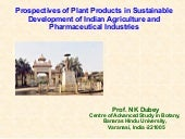 Prospectives Of Plant Products In S...