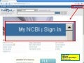 PubMed  My Ncbi