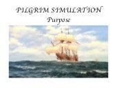 Pilgrim Simulation: Purpose And Int...