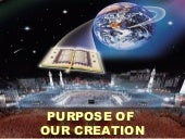 Purpose Of Creation