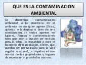 Queeslacontaminacionambiental