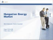 R cleantech finland bd to hungary -...