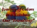 Rainbow Colors of Friendship