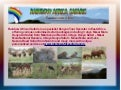 Rainbow African Safaris - specialist Kenyan Tour Operator in East Africa.