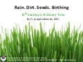 Rain. Dirt. Seeds. Birthing.